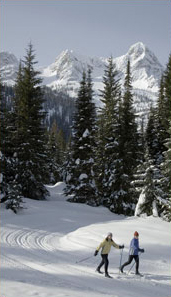 Cross-Country Skiing in Fernie