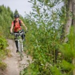 Mountain Biking in Fernie